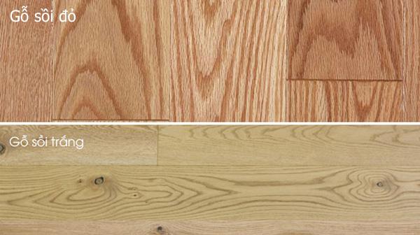Nhận biết gỗ sồi